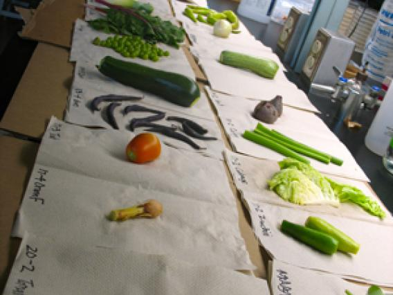 Table of vegetables